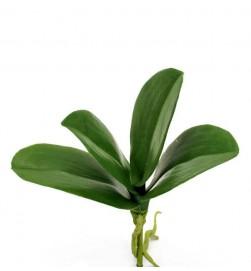 Orkidéblad, konstgjort