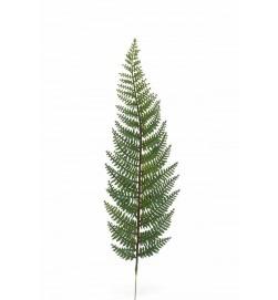 Ormbunksblad, grön, konstgjord