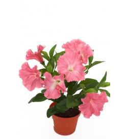 Petunia, rosa, konstgjord blomma