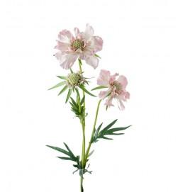 Scabiosa, rosa, konstgjord blomma