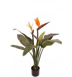 Strelitzia, konstgjord krukväxt