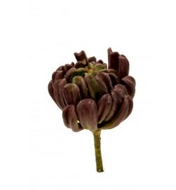 Succulent röd brun, konstgjord