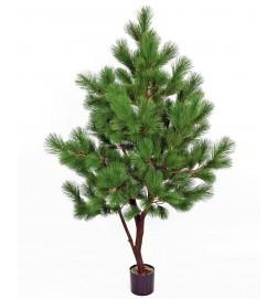 Tall, Pinus, konstgjort
