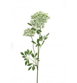 Trachelium, vit, konstgjord blomma