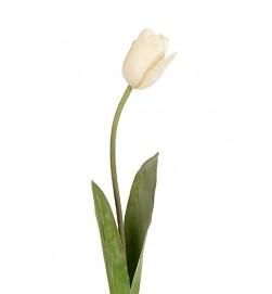 Tulpan, creme, konstgjord blomma